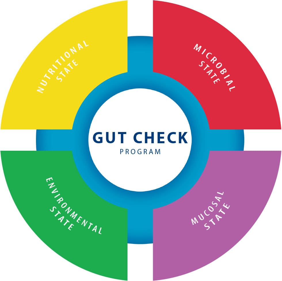 Schema Gut Check Program